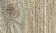 d3337-modrzew-drewnopodobne